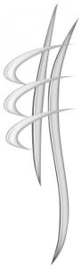 logoAFC-92x300